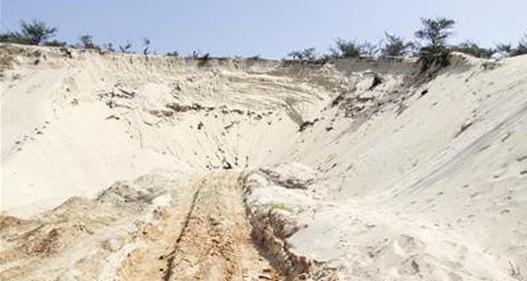 Chuyện nhà nông với nông nghiệp: Làm giàu trên vùng cát trắng