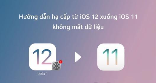 Thủ thuật hạ cấp iOS 12 về iOS 11 không mất dữ liệu ứng dụng
