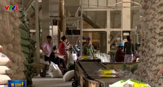 Philippines thay hạn ngạch bằng thuế nhập khẩu gạo