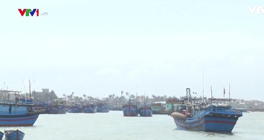 Di dời cảng cá, ngư dân gặp nhiều khó khăn