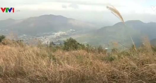 Các khu bảo tồn thiên nhiên của Hong Kong (Trung Quốc) có nguy cơ biến mất