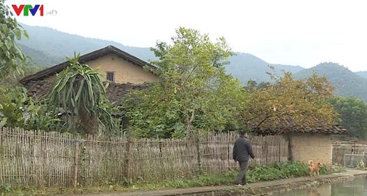 Xây dựng bản văn hóa người Tày ở Đồng Thanh, Bình Liêu