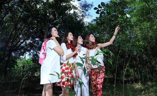 Top 17 Hoa khôi áo dài Việt Nam tạo dáng trong vườn cao su
