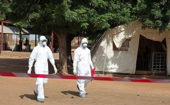 Mali tuyên bố chữa trị thành công ca nhiễm Ebola cuối cùng