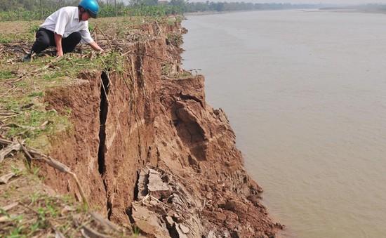 Sạt lở bờ sông Thao, 10ha đất sản xuất bị cuốn trôi