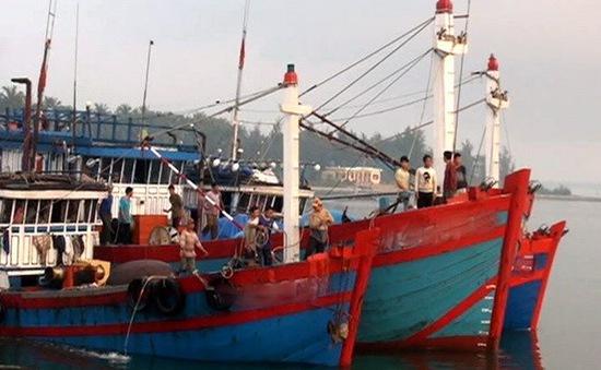 Nhiều tàu cá Việt Nam bị bắt giữ ở Indonesia