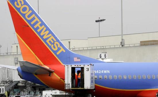Mỹ: Nhân viên vận chuyển hành lý bị bắt vì vận chuyển ma túy
