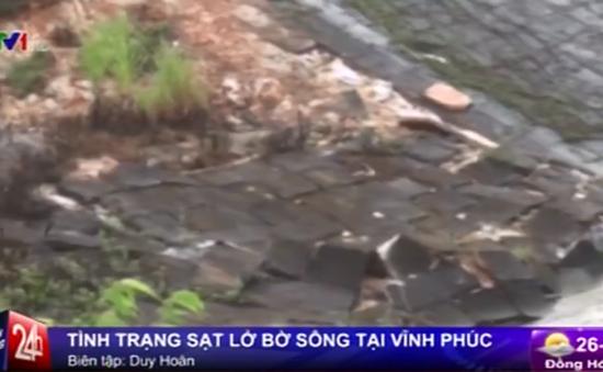 Báo động tình trạng sạt lở bờ sông tại Vĩnh Phúc