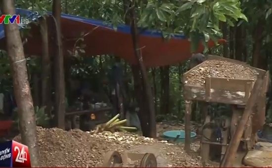 Bắt khẩn cấp 7 đối tượng cướp vàng tại mỏ Bồng Miêu
