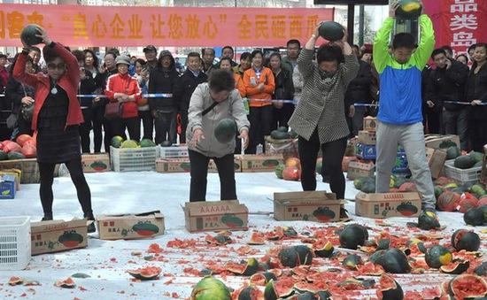 Trung Quốc: Người dân hủy 4 tấn dưa có hàm lượng thuốc trừ sâu cao