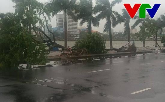 Đà Nẵng: Bão số 3 gây mưa lớn, đổ cây, giao thông hỗn loạn