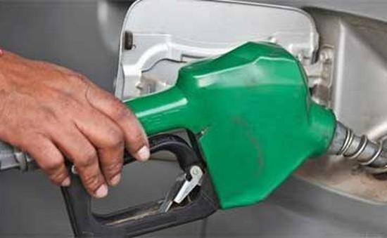 Biểu tình bằng xe tải ở Brazil phản đối giá xăng tăng cao
