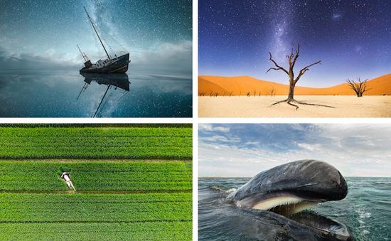 Những bức ảnh về thế giới tự nhiên ấn tượng nhất năm 2015