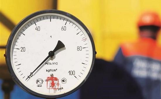 Ukraine sẽ ngừng mua khí đốt của Nga từ ngày 1/4 tới