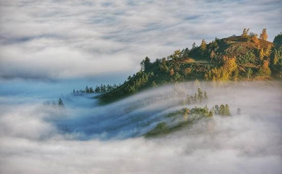 Ngắm vẻ đẹp phủ sương ma mị của nước Anh