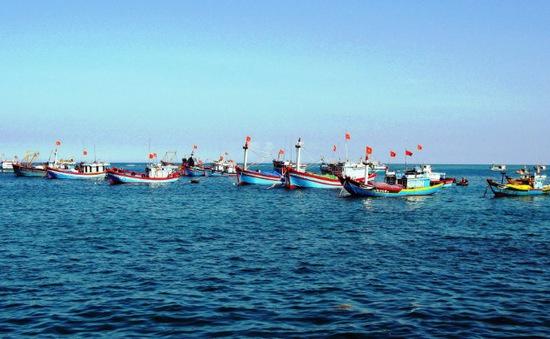 65% tàu thuyền ở Quảng Trị không có biển kiểm soát