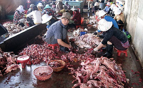 Quảng Nam: Liên tiếp xử phạt các cơ sở sản xuất thực phẩm bẩn