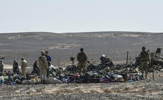 Thủ tướng Nga: Còn quá sớm để kết luận nguyên nhân vụ máy bay rơi ở Ai Cập