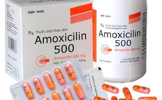 Cảnh báo kháng sinh Amoxicilin 500mg giả