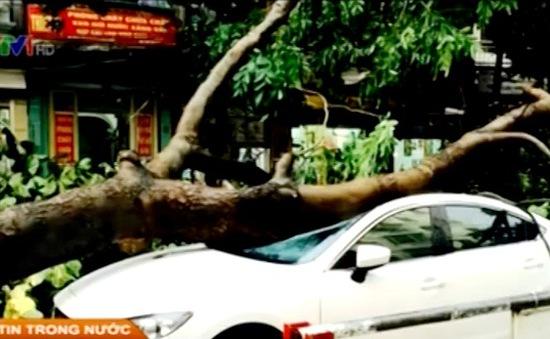 Mua bảo hiểm xe ô tô - Nên hay không?