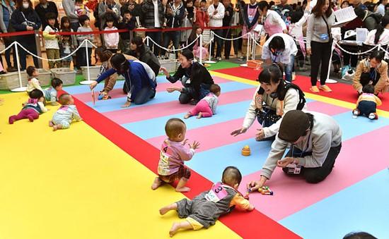 Hơn 600 em bé Nhật Bản lập kỷ lục thế giới về thi bò