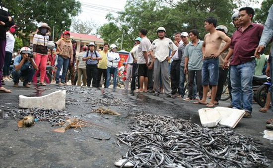 Dân đổ cá ra đường phản đối doanh nghiệp gây ô nhiễm