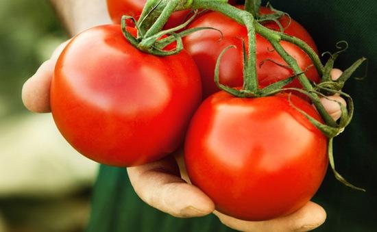 7 lưu ý cần nhớ khi ăn cà chua
