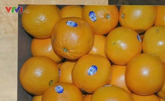 3 loại hoa quả Australia sẽ trở lại thị trường Việt Nam