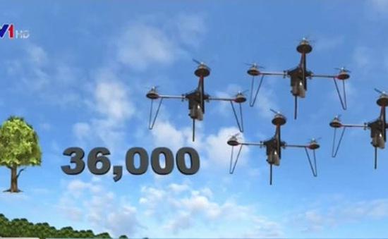 Trồng cây bằng máy bay không người lái