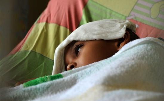 Mexico: Virus Chikungunya lây lan nhanh chóng