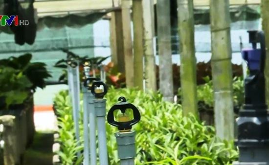 TP.HCM: Sức lan tỏa từ mô hình nông nghiệp công nghệ cao