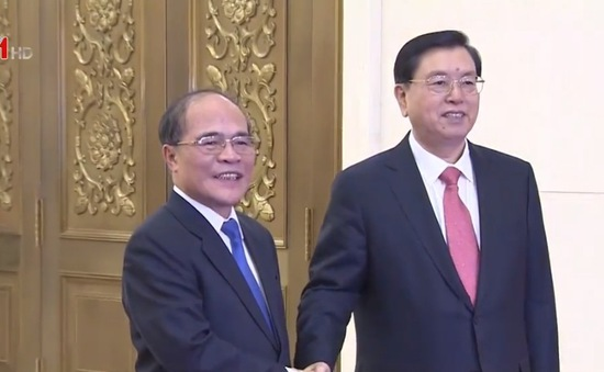 Chủ tịch Quốc hội Nguyễn Sinh Hùng hội đàm với Chủ tịch Nhân đại Trung Quốc