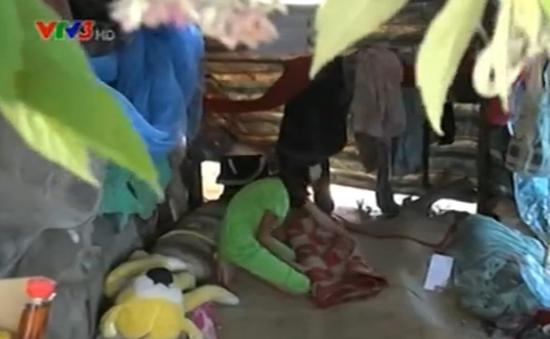Xúc động cô bé  11 tuổi đi bán sen để nuôi cha bệnh tật