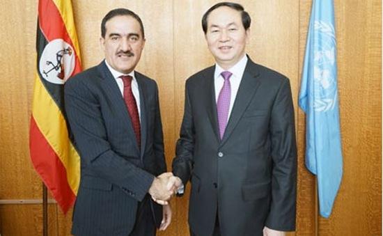 Việt Nam triển khai tích cực các chương trình hành động của LHQ