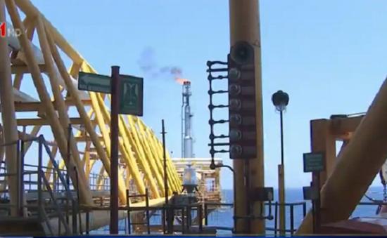 Giá dầu giảm tạo động lực phát triển cho Việt Nam