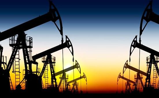 Giá dầu giảm xuống dưới ngưỡng 50 USD/thùng