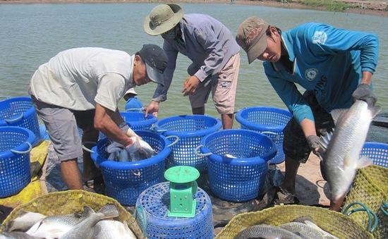 Giao thông hỗ trợ phát triển Đồng bằng sông Cửu Long
