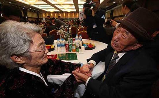 96 gia đình Hàn Quốc bị ly tán được đoàn tụ với người thân