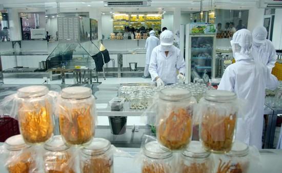 Việt Nam sản xuất thành công đông trùng hạ thảo