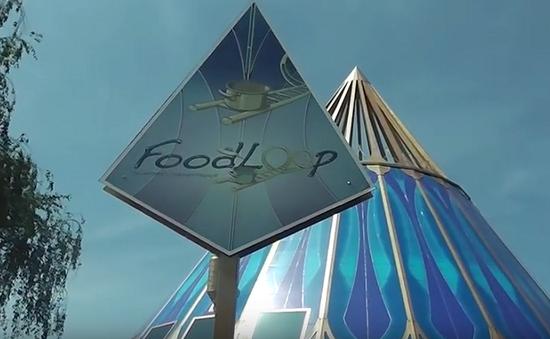 Food Loop - Ứng dụng điện thoại tránh lãng phí thực phẩm