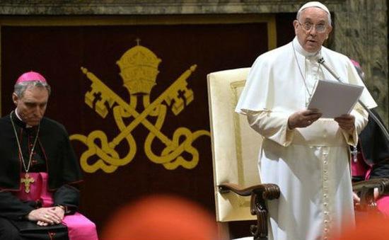 Giáo hoàng bổ nhiệm một tân Hồng y người Việt