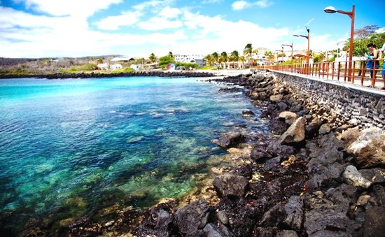 Quần đảo Galapagos - Minh chứng sự tiến hóa của thế giới