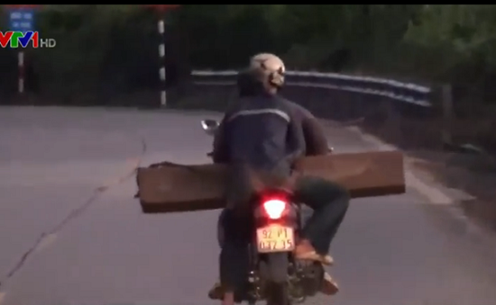 Ngăn chặn nạn lâm tặc vận chuyển gỗ lậu bằng xe gắn máy tại Quảng Nam