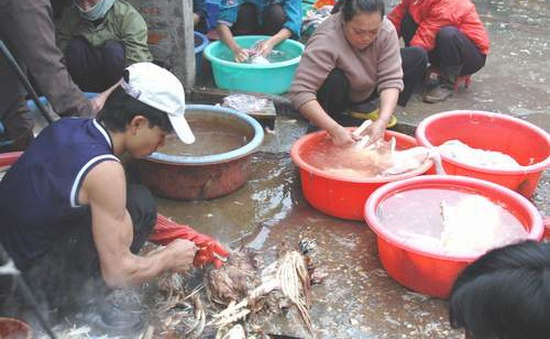 Hà Nội: Kiểm tra kinh doanh, giết mổ gia súc, gia cầm cận Tết