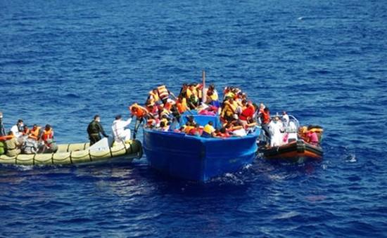Italy giải cứu gần 300 người di cư trên biển