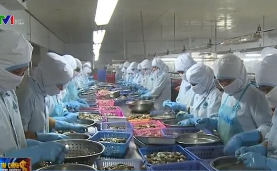 Doanh nghiệp Việt Nam và Hàn Quốc sẵn sàng đón cơ hội từ VKFTA