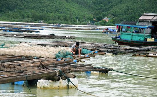 Quảng Ninh: Người dân khẩn trương khắc phục hậu quả sau mưa lũ