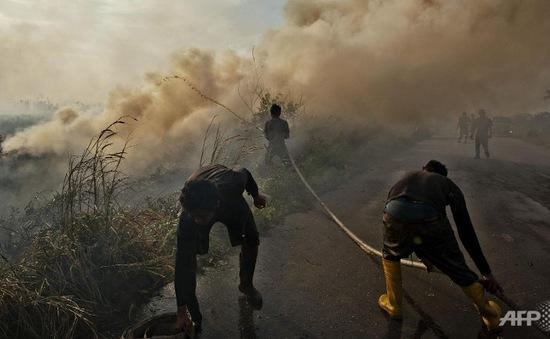 Indonesia công bố 240 nghi phạm gây cháy rừng
