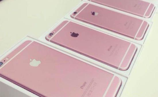 Sẽ không có iPhone 6S phiên bản màu hồng?