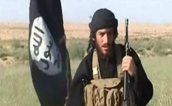 Mỹ treo thưởng lớn cho người giúp bắt thủ lĩnh cấp cao IS